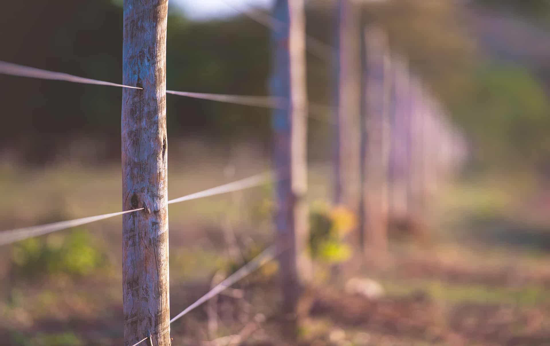 Fencing, Panels & Gates
